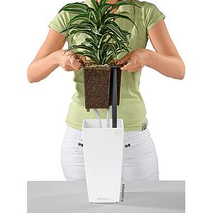 Lechuza Table Planters MAXI-CUBI all in one