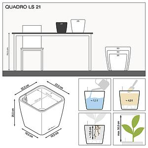16123 QUADRO LS 21 anthrazit metallic