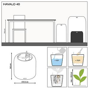 le_havalo40_product_addi_nz