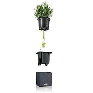 13399 Green Wall Home Kit Color schiefergrau